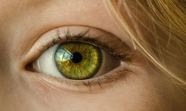 Alternative Augenheilkunde & Magnetfeldtherapie bei Makuladegeneration und Augenverletzung
